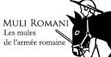 les mules romaines