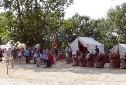 Festival Arelate à Arles, 2012